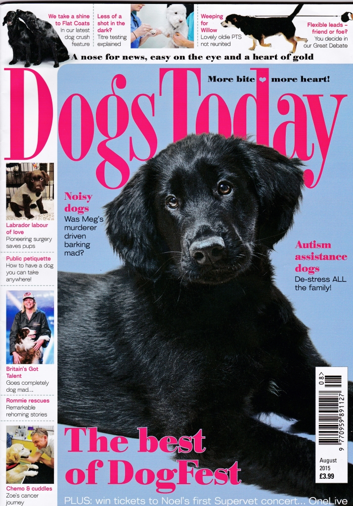 August 2015 Mag cover