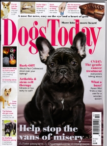 Dogs Today October Front 2015