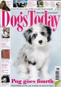 November Cover 2015