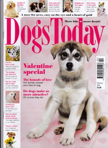Feb 2016 cover